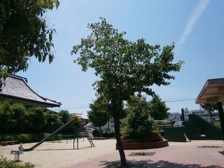 高槻市春日町公園 (2).jpg