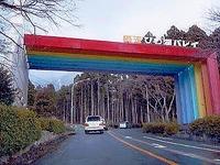 jp-2006-5-1.jpg